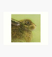 Portrait of a Rabbit Art Print