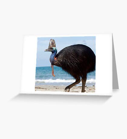Beach Comber - cassowary at Etty Bay Greeting Card