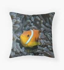 The anemonfish of the Maldives Throw Pillow
