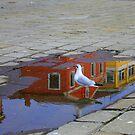 Reflections after the rain by annalisa bianchetti