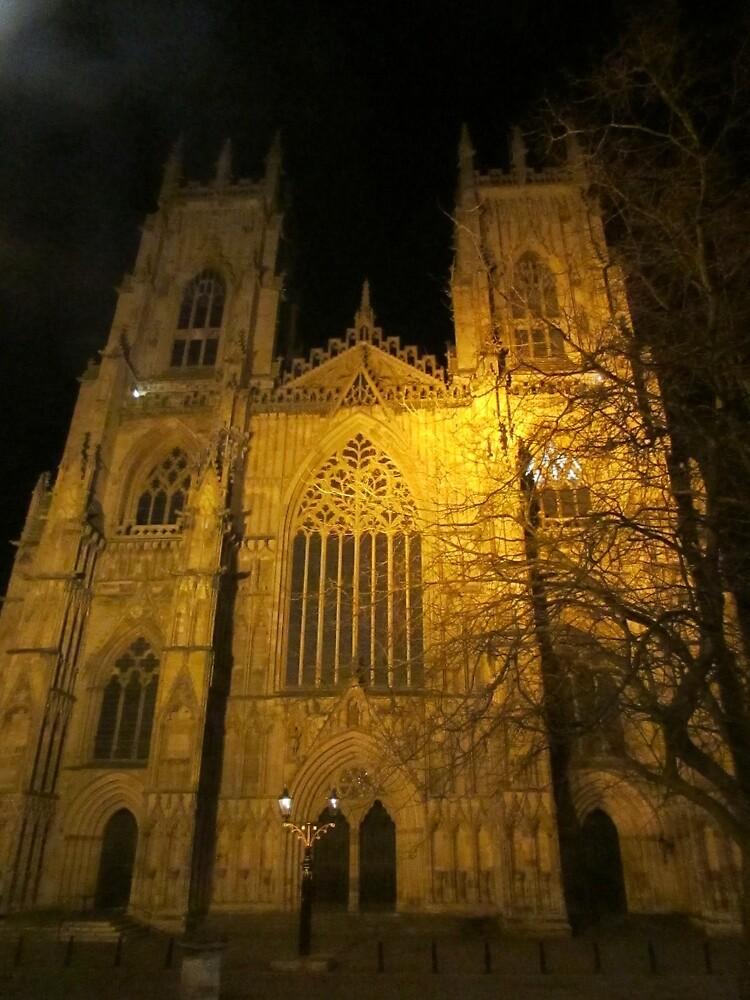 York Minster by Emlehh
