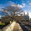 Clare College Skys by Robert Ellis