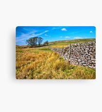 Grassington moorland Canvas Print