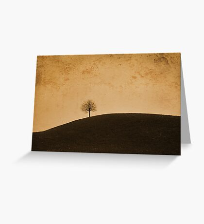 Orange Tree Greeting Card