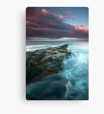 Making the best of it Canvas Print