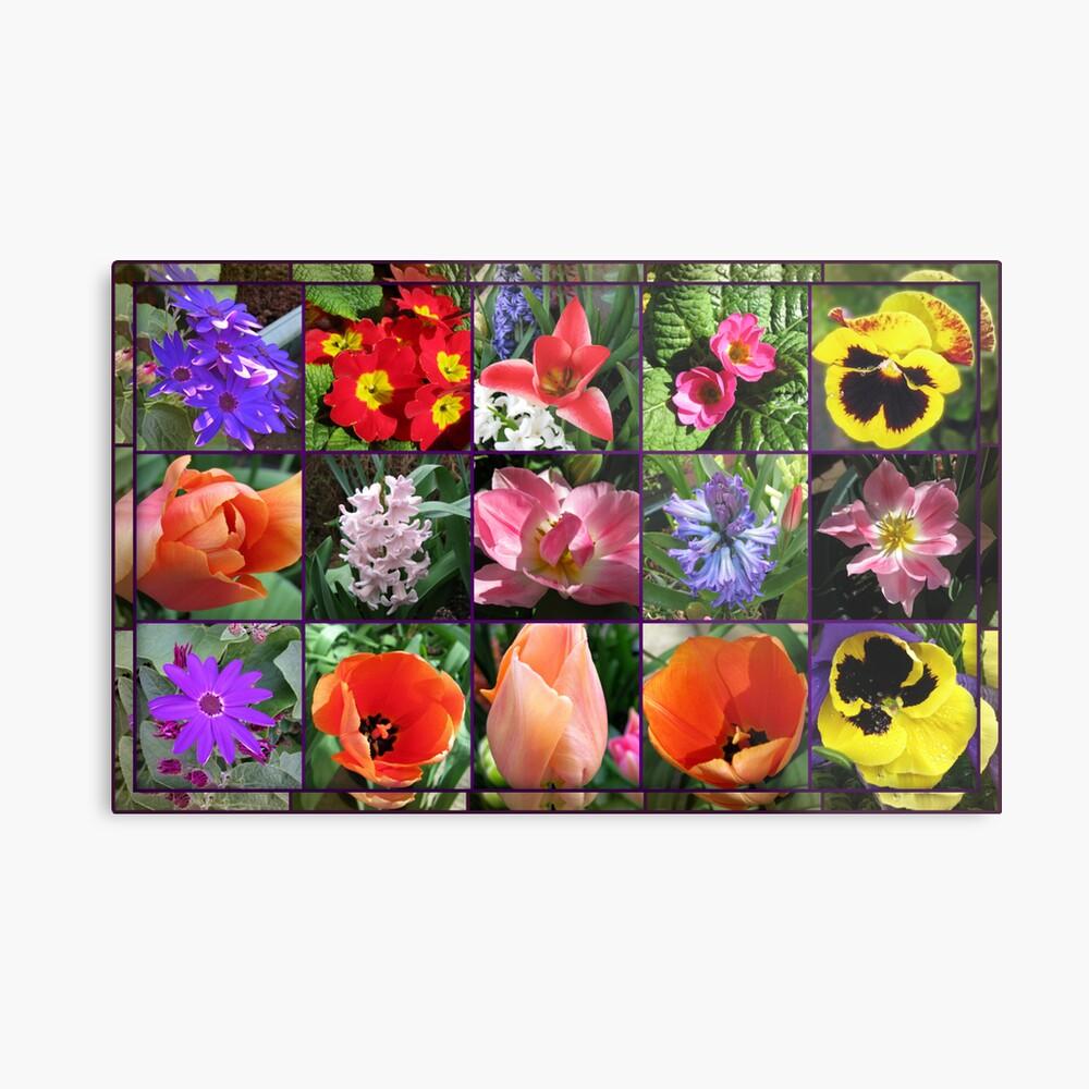 Glories of Spring Floral Collage in Mirrored Frame Metallbild
