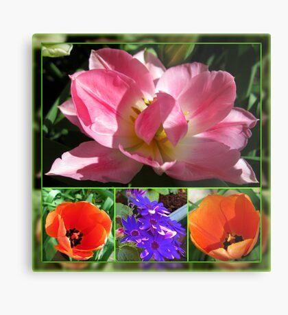 Dreamy Tulips Collage in Mirrored Frame Metallbild