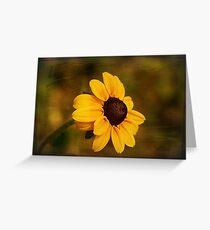 Textured Black-eyed Susan Greeting Card