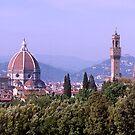 Florence  Skyline#2, Italy by johnrf