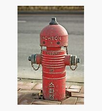 The INCHEON red hydrant robots Photographic Print