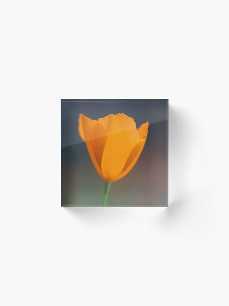 Alternate view of Tufted Poppy Acrylic Block