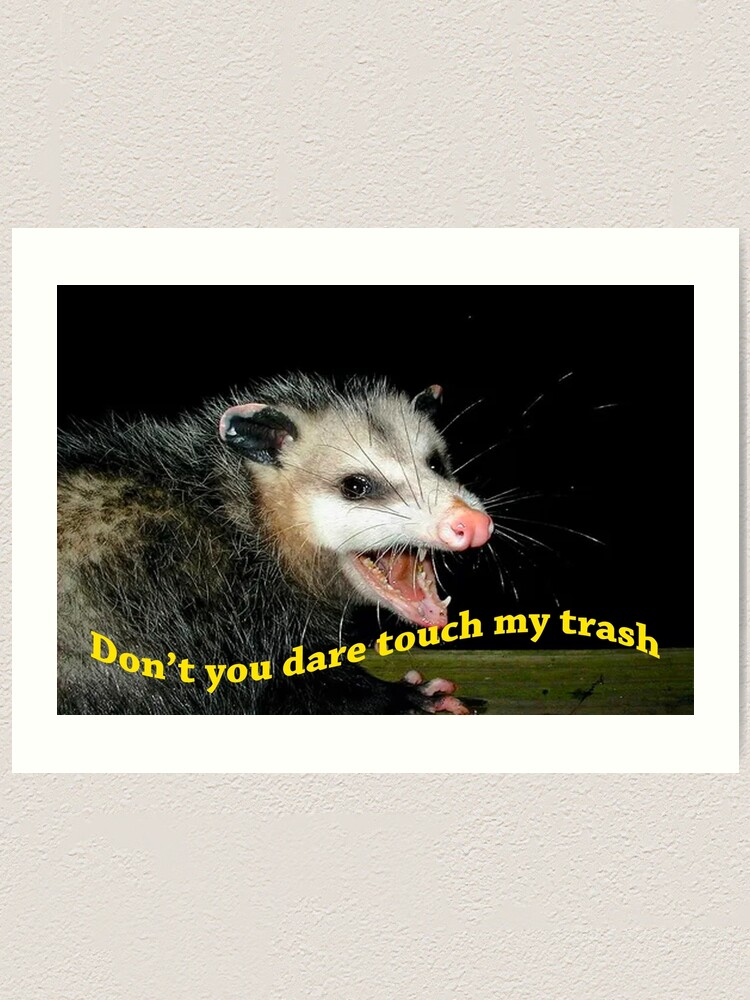 Don T Touch My Trash Opossum Meme Art Print By Chase The Girl Redbubble