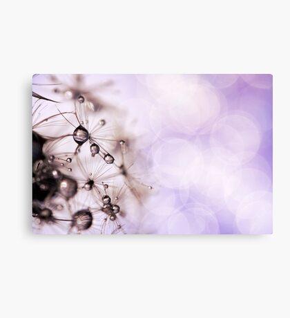 Dewdrop Eyelashes Canvas Print