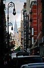 NY Street by Leon Heyns