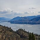 Okanagan Lake from the Park by Michael Garson