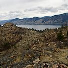 Okanagan Mountain Park View by Michael Garson