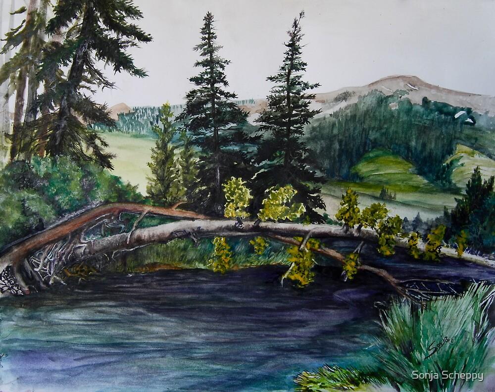 Blue River Camp Ground by Sonja Scheppy