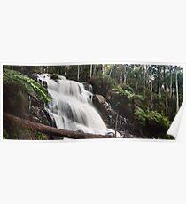 Toorongo Falls - Panograph Poster