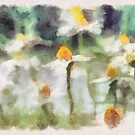 aquarella by Aimelle