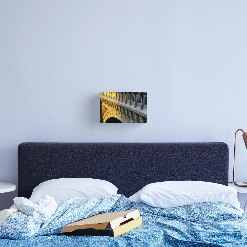 Is It Gold? Or Is It Silver? Canvas Print