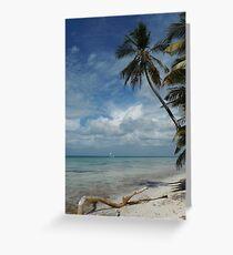 Dominican Republic Beach Greeting Card