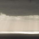 Rays of light on Port Phillip Bay by Will Hore-Lacy