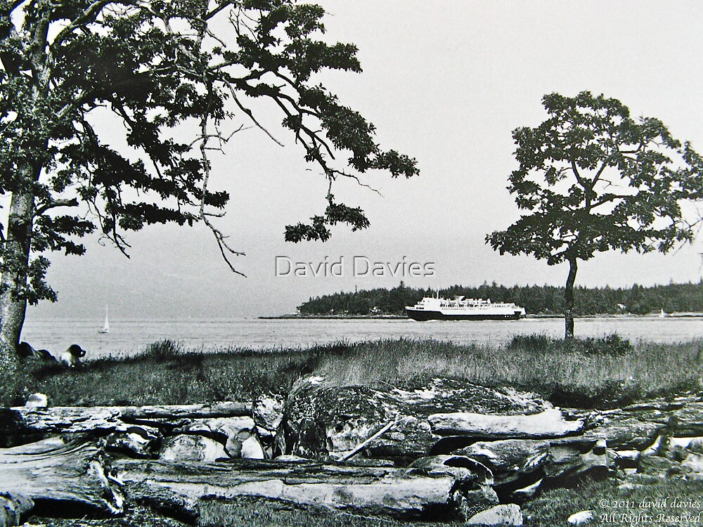 BC Ferry from Pipers Lagoon, Nanaimo by David Davies