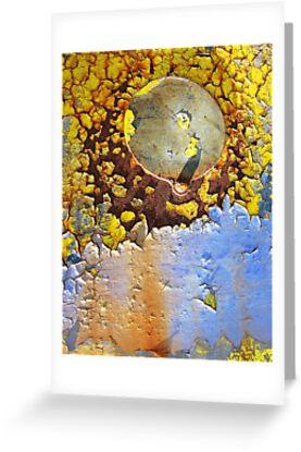 The teardrop explodes by David Carton