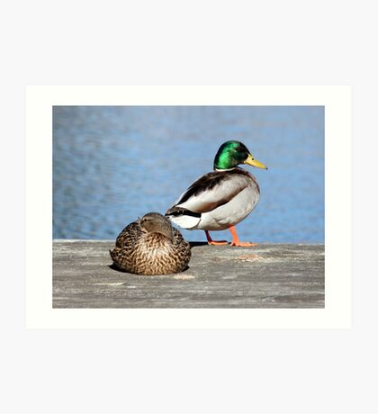 Life Is Just Ducky Art Print