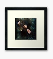 Piggy Ears Framed Print