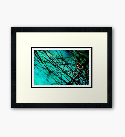 A Sea of Tangled Webs Framed Print