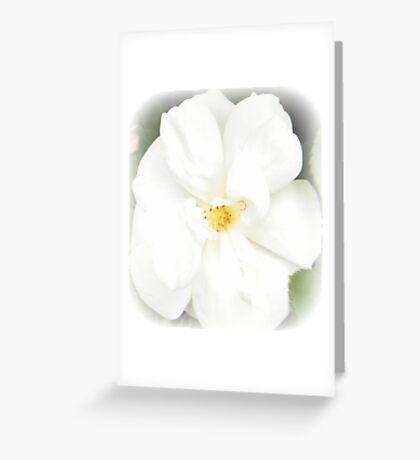 First Rose Greeting Card