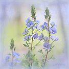 Blue  dream by aMOONy