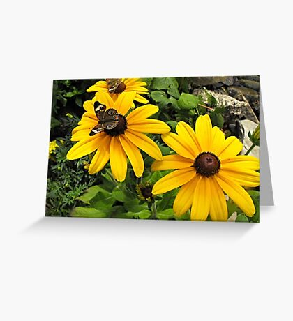Yellow flowers and butterflies Greeting Card