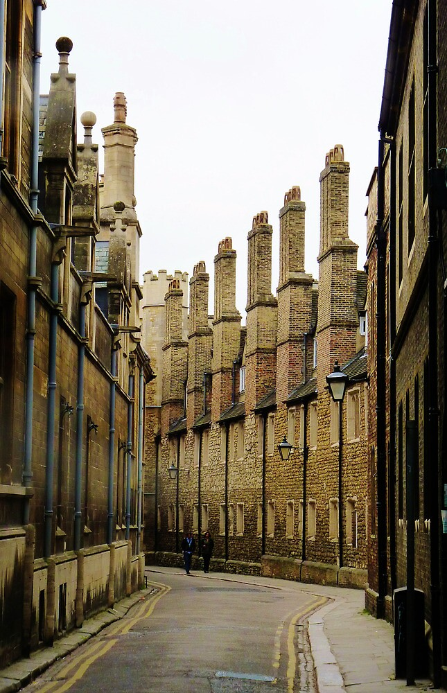 The Chimneys down Trinity Lane by artfulvistas