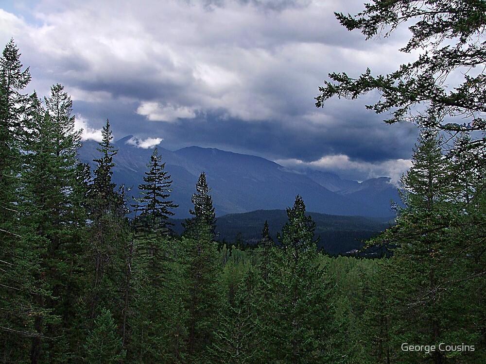 A Far Wilderness by George Cousins