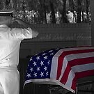 some gave all by Ted Petrovits