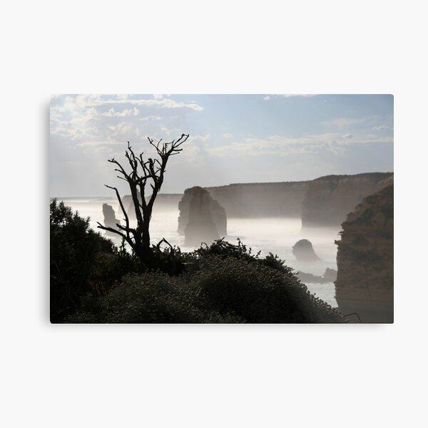 Tree over The Twelve Apostles Metal Print