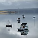 Reflection of boats by medley