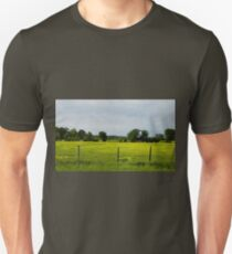Cows  In Summer  Pasture Unisex T-Shirt