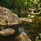 Tarra River - Victoria by Greg Earl