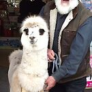 Deloraine man and his pet by gaylene