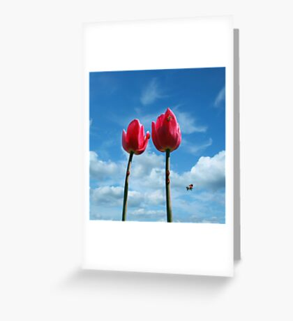 Red and red.... Greeting Card