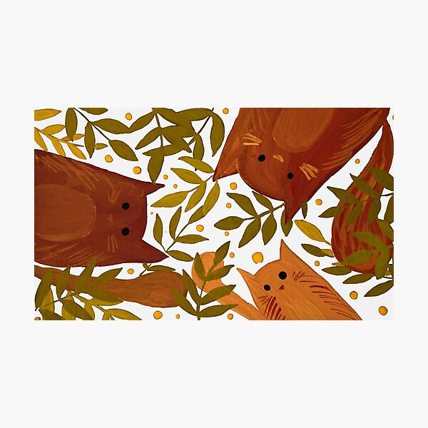 Cats and branches - autumn Photographic Print