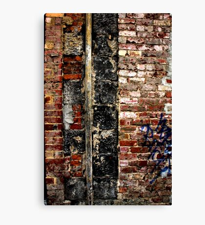 Spinal Cord Canvas Print