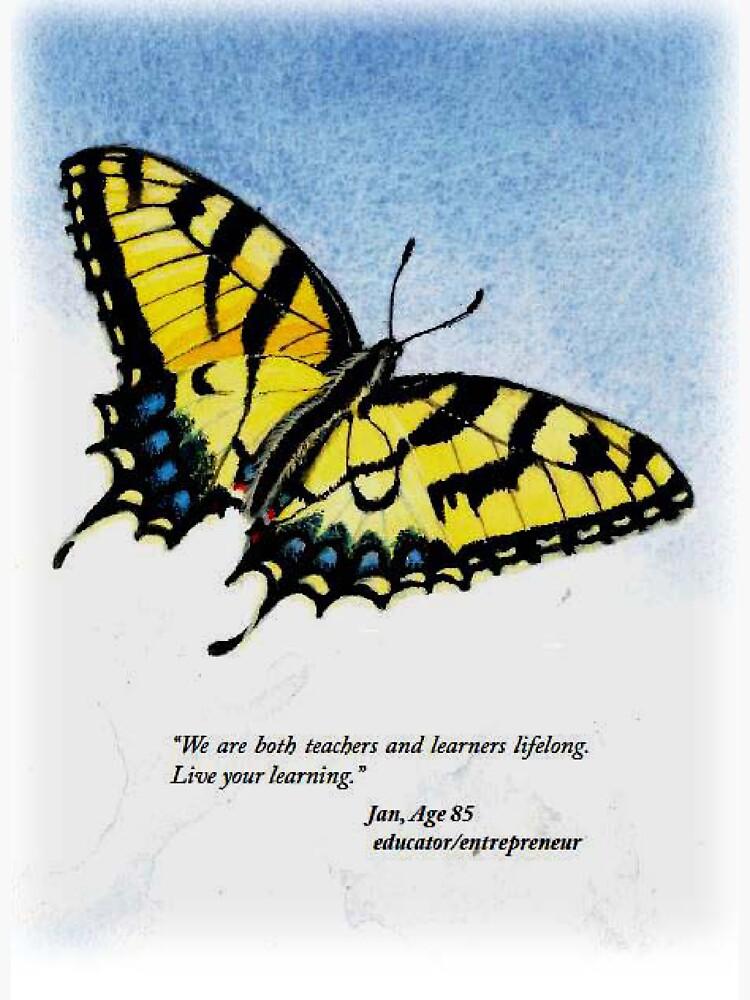 Lifelong Learning Butterfly by TobyWisdom