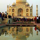 Taj Mahal with Reflection - India by Bev Pascoe
