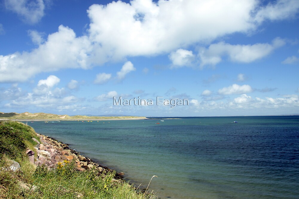 Kerry Shoreline by Martina Fagan