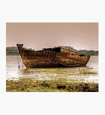 Our Joanne - Fleetwood Marsh Photographic Print
