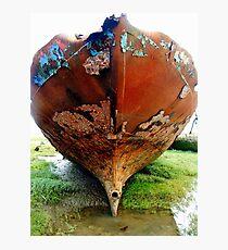 Hull - Eureka BA558 Fleetwood Marsh Photographic Print